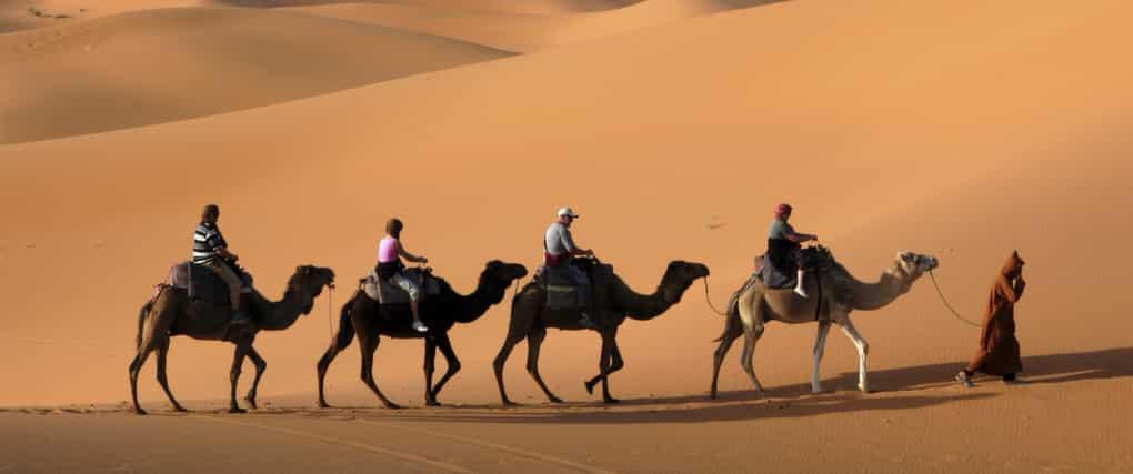 Ballade en Dromadaire & Quad à Marrakech