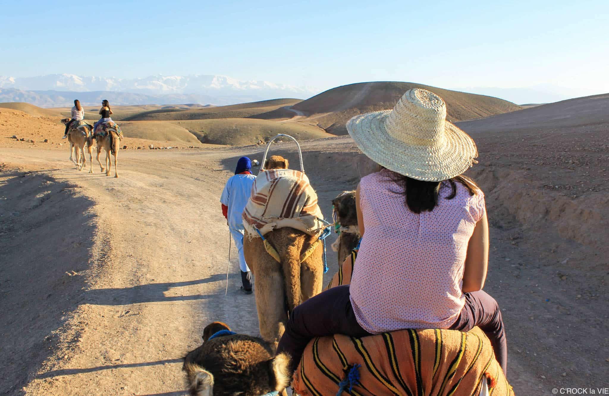 balade à dos de chameau Balade à dos de chameau Agafay 7