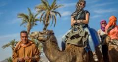balade à dos de chameau Balade à dos de chameau camel tour 240x126