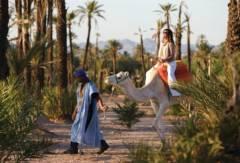balade à dos de chameau Balade à dos de chameau dfcb224981b3af5b6cf998b4356b4a82 1 240x163